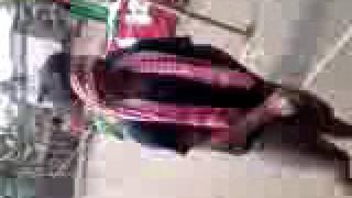 hulo biral