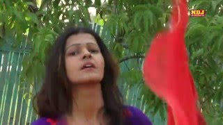 New Haryanvi Song 2016 | पल्ला साड़ी का । 2016 lattest Dance Song Haryanvi | NDJ Music