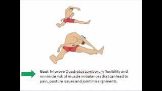 Low Back Pain Exercises - quadratus lumborum stretch.mp4