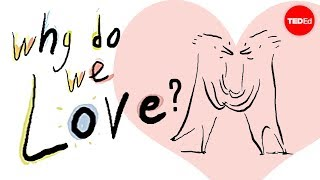 Why do we love? A philosophical inquiry - Skye C. Cleary