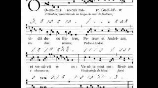 Introitus Dominus secus (Gregor und Taube)