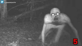 10 Creepy & Unexplained Trail Camera Photos!