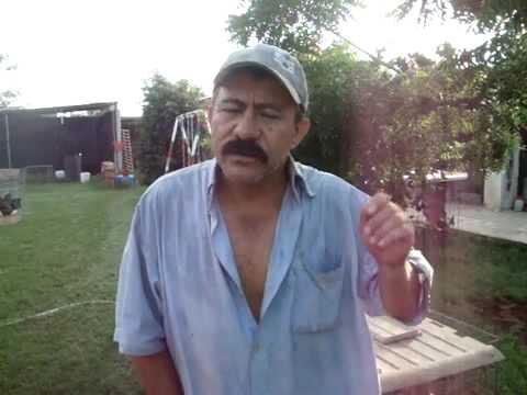 JORGE. PASTOR DE GALLOS PROFESIONAL. ENTREVISTA .flv