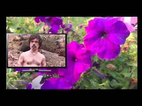Xxx Mp4 Голый Питер Динклейдж из Игры Престолов в шоу 'Naked And Afraid' 3gp Sex