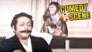 Dinesh Hingoo & Monkey Funny Scene | Comedy Scene | Paap Ka Ant | Govinda, Madhuri Dixit | HD