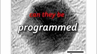 Nano Pacman on Graphene (LIVE)