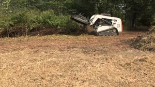 My Skid Steer Solutions  - Eterra Brush Cutter Clearing Attachment on my Bobcat