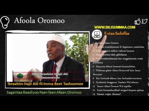 Xxx Mp4 Afoola Oromoo Hibboo Fii Makmaaksa Kutaa Sadaffaa 300 3gp Sex