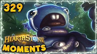 Creamed by Warlock! ( ͡° ͜ʖ ͡°) | Hearthstone Daily Moments Ep. 329 (Funny and Lucky Moments)