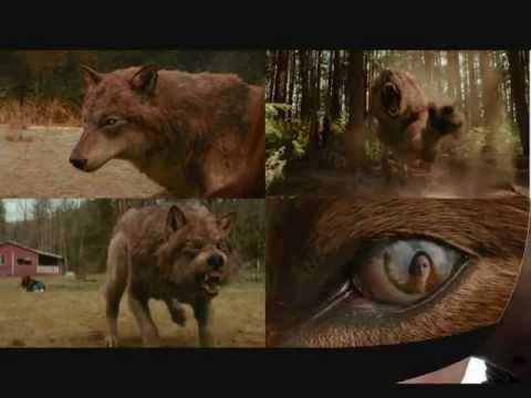 Saga Twilight : Résumé en images et chanson  (- it will rain - chanté par moi)