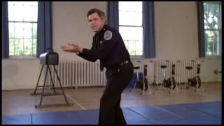 Loca academia de policia 1 Tackleberry  y Harrys
