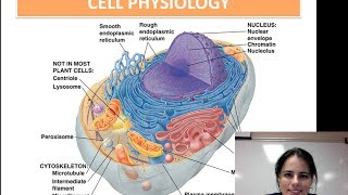 Cell Physiology (Unit 1 - Video 7)