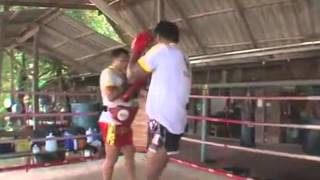 Buakaw Tribute by Warriors