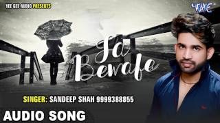 Bhojpuri का सबसे दर्द भरा गीत 2017 - Ja Ae Bewafa - Sandeep Sah - Bhojpuri Hit Kanwar Songs 2017 new