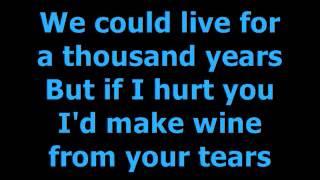 INXS Never Tear Us Apart Lyrics