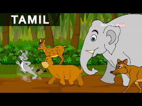 Rabbits Dream - Jataka Tales In Tamil - Animation / Cartoon Stories For Kids