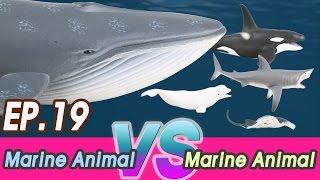 [En] #19 Marine Animal VS Marine Animal (Fighting Dinosaurs for kids) 공룡싸움 Collecta figure