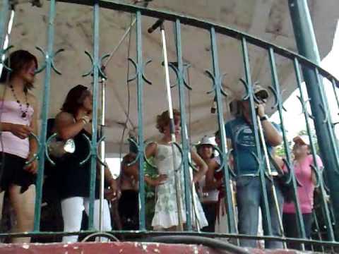 fiestas estancia de ayllones 2009