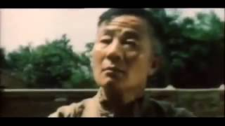 Deadly Kicks In The Snake's Shadow 1975 Lung Fei, Lee Yi Min Rare Old School Kung Fu Movie