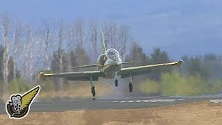 L-39 Jet Hit By Whirlwind On Take-off