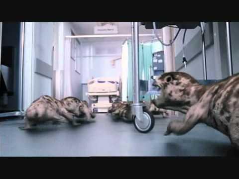 Primeval Hamster Dance