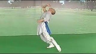 Shaolin drunken kung fu: form 1