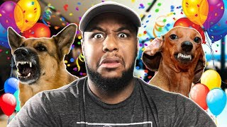 WORST DOG PARTY EVER | Pet the Pup at the Party