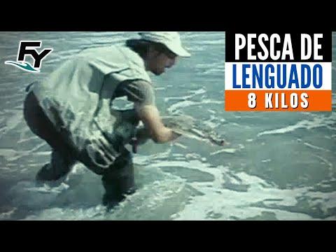 Lenguado 8 5 kg. Pesca Sustentable capítulo 1 CHILE pescachilena.cl
