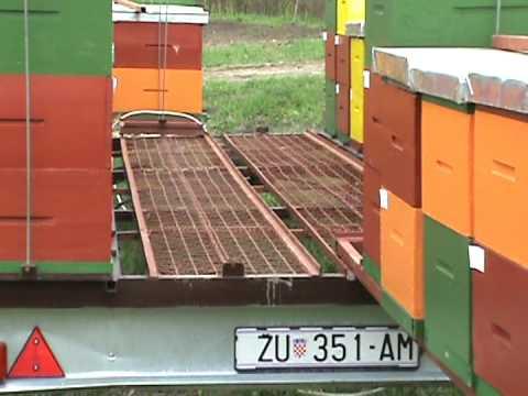 honey bees trailer