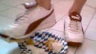 Puma Avanti crushing cream cake