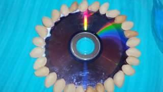 CD WALL HANGING &PISTA SHELL CRAFT