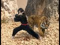 Download Video Download Pencak Silat Harimau Utara Part 2 3GP MP4 FLV
