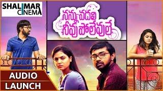 Nannu Vadili Neevu Polevule Movie Audio Launch Part 01  || Bala Krishna Kola, Wamiqa Gabbi