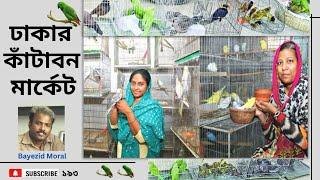 Pets and birds market, ঢাকার কাঁটাবন মার্কেটে বিভিন্ন ধরনের পোষা প্রাণি পাখি ও কবুতর বেচাকেনা হয়