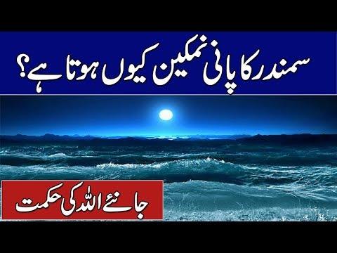 Xxx Mp4 Why Sea Water Salty Samundar Ka Pani Namkeen Kyun Hota Hai Rohail Voice 3gp Sex