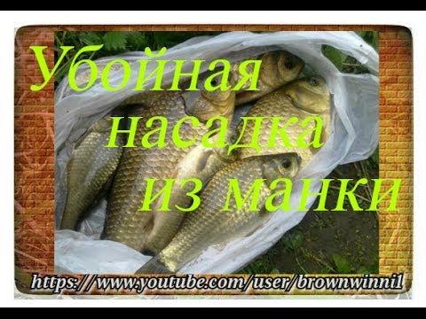 как приготовить укроп для рыбалки
