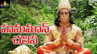 Hanuman Chalisa Telugu Full Movie | Vindu Dara Singh, Suman, AVS