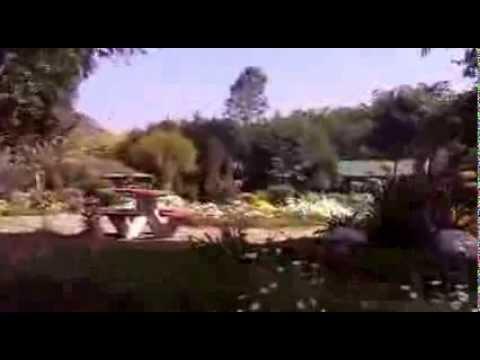 Japanese Park Swaranjyanti Park Rohini Delhi India