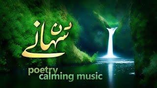 Nice Urdu Poetry wd Relaxing Music   Beautiful Urdu Hindi Ghazal   Pir Nasir ud Din Nasir kalam