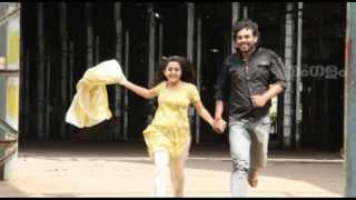 Marriage for Actress Bhama?