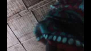 Nelufa lipe kiss  14 08 2013 khulna