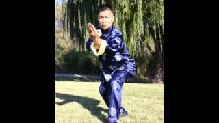 FMK: Questions 1 Training in Combat With Me Directly, Becoming a Sifu