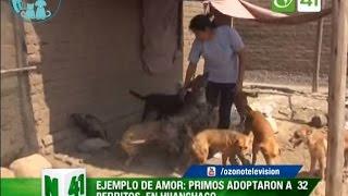 Albergue para perritos en Huanchaco - Trujillo
