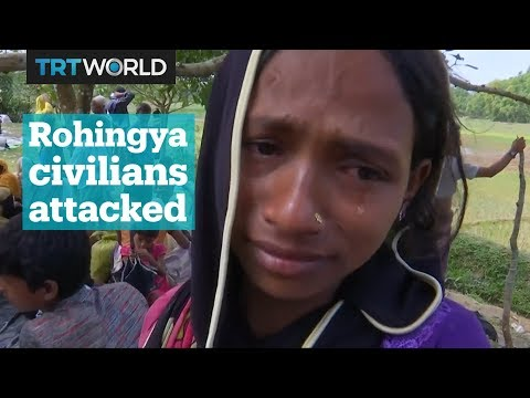 Xxx Mp4 Rohingya Muslims Were Attacked As They Tried To Flee Violence In Myanmar 3gp Sex