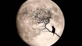 Nicola Piovani, La voce della luna