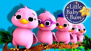 "Five Little Birds | Nursery Rhymes | Original Song based on ""5 Little Ducks"" by LittleBabyBum!"