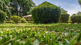Henarathgoda Botanic Gardens, Gampaha | Sri Lanka | GoPlaces