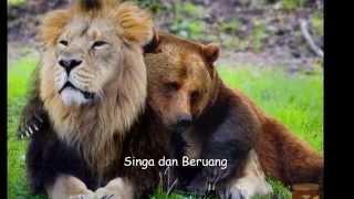 Nama Binatang (Ragam Fauna / Aneka Hewan)
