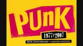 Punk - 1977 - 2007 - Roots Rarities Cd. III