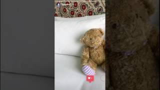 Como salvar videos do Instagram Stories no seu Android 2016